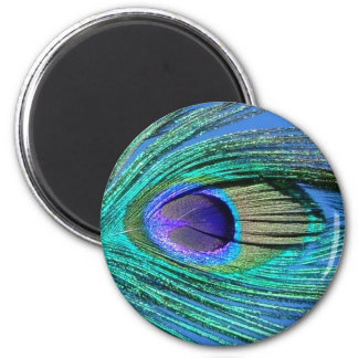 Peacock Pin 2 Inch Round Magnet