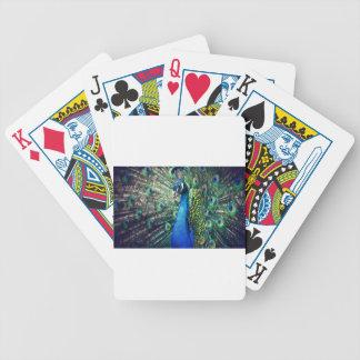 peacock poker deck