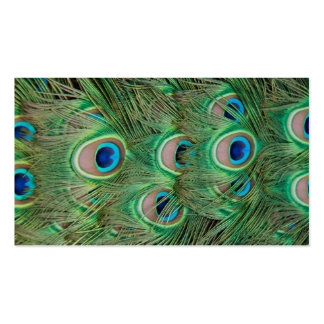 Peacock plumage business card