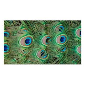 Peacock plumage business card templates