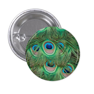 Peacock plumage 1 inch round button