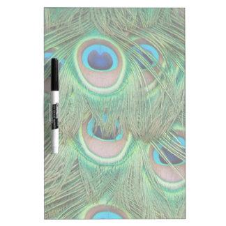 Peacock plumage Dry-Erase board