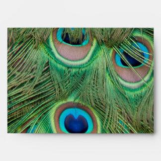 Peacock plumage envelope