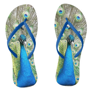 Peacock Plumage Photo Flip Flops