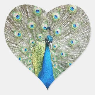 Peacock Plumage Photo Heart Sticker