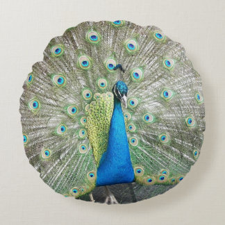 Peacock Plumage Photo Round Pillow