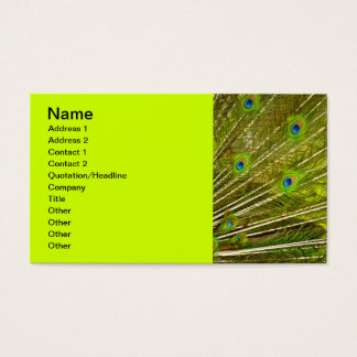 Peacock-plumage-texture944 PEACOCK FEATHERS PHOTO Business Card