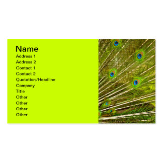 Peacock-plumage-texture944 PEACOCK FEATHERS PHOTO Double-Sided Standard Business Cards (Pack Of 100)