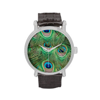 Peacock plumage watches