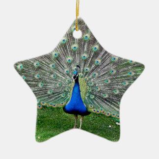 Peacock Plume Ornament