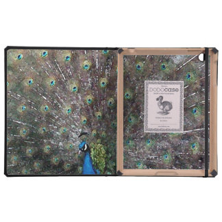 Peacock Pose Case For iPad
