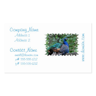 Peacock Roosting Business Cards