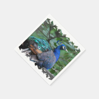 Peacock Roosting Disposable Napkin
