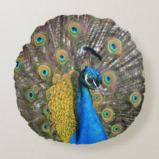 Peacock Round Pillow
