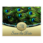 Peacock Save the Date Wedding Cards Postcard
