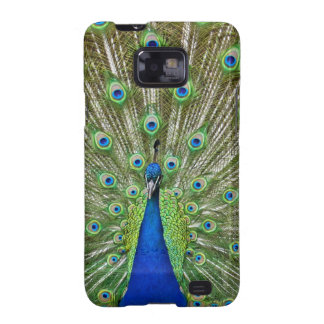 Peacock showing its feathers, as part of a galaxy s2 cases
