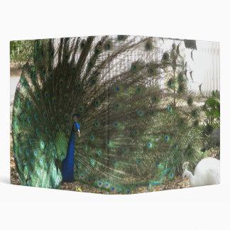 Peacock Showoff Avery Binder
