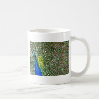 Peacock Showoff Coffee Mug