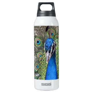 Peacock SIGG Thermo 0.5L Insulated Bottle