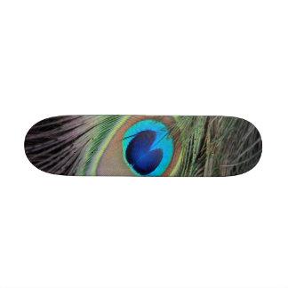 Peacock Skate Decks