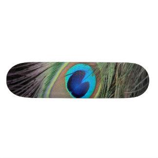 Peacock Custom Skateboard