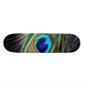 Peacock Skateboard Deck