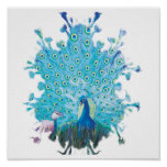 Peacock spirit posters