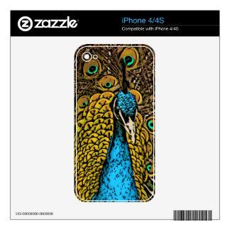 Peacock Splendor Illustration Skin For The iPhone 4