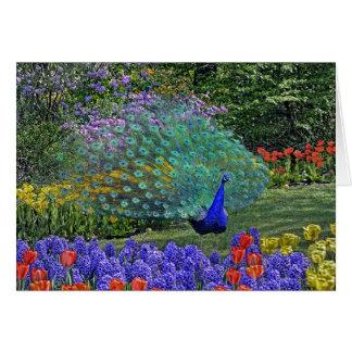 Peacock Spring Flowers 2 Greeting Card