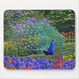 Peacock Spring Fowers 2 Mouse Pad