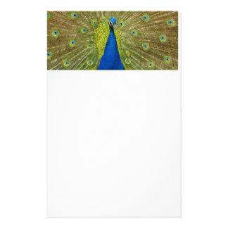 Peacock Stationary Stationery