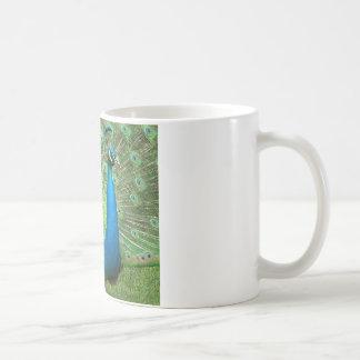 Peacock Strutting His Stuff Coffee Mug