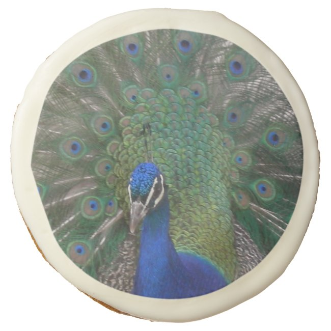 Peacock Sugar Cookies