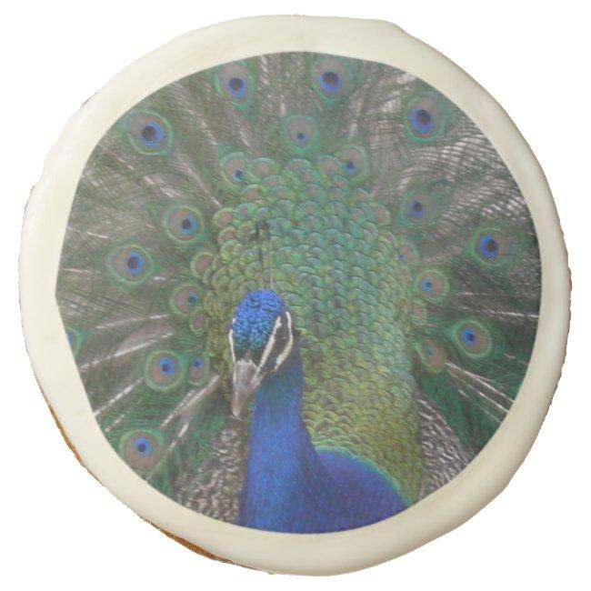Peacock Sugar Cookies