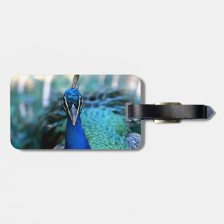Peacock Tag For Luggage