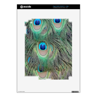 Peacock Tail Feather Large Eyes iPad 2 Skin
