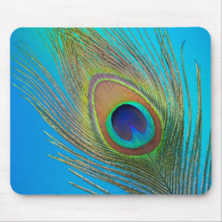 Peacock Tail Feather Mouse Pad