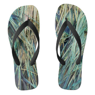 Peacock Tail Feathers New Growth Flip Flops