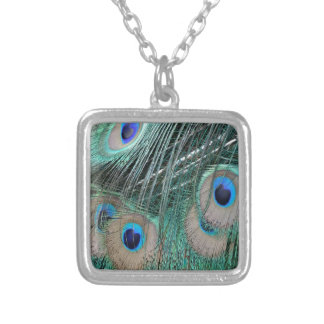 Peacock Tail Feathers Silver Plated Necklace