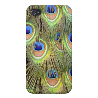 Peacock Tail Phone Case iPhone 4/4S Cover