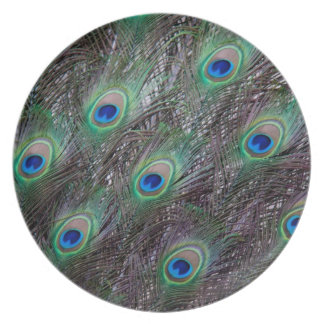 Peacock tail plates