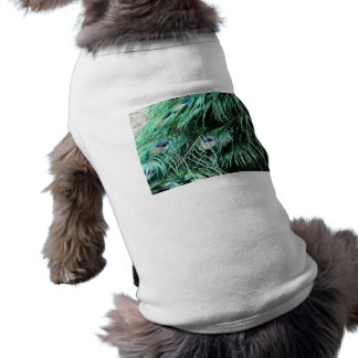 peacock tail T-Shirt