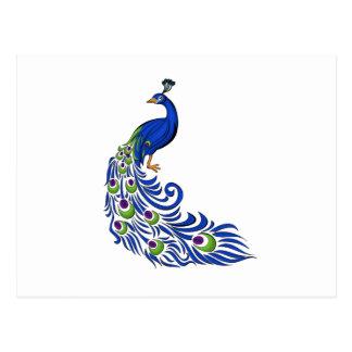 Peacock Tarjeta Postal