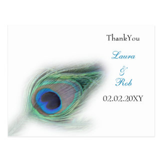 peacock ThankYou Cards Postcard
