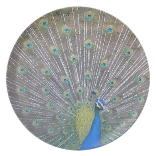 Peacock (the One) Melamine Plate