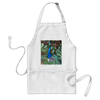 Peacock Under A magnolia Tree Adult Apron