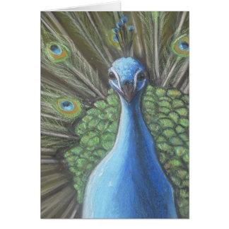 Peacock--Vertical--Blank Card