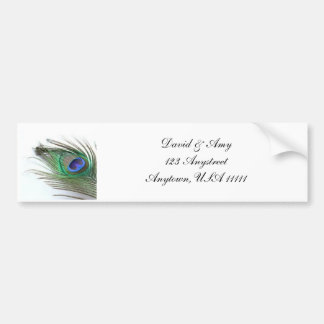 Peacock Wedding Bumper Sticker