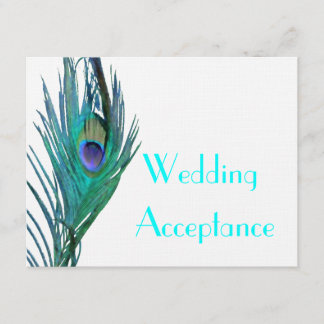 Peacock Wedding Response #2