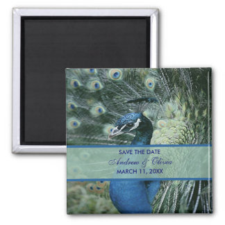 Peacock Wedding Save The Date 2 Inch Square Magnet